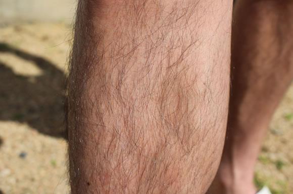 男性の脚とムダ毛